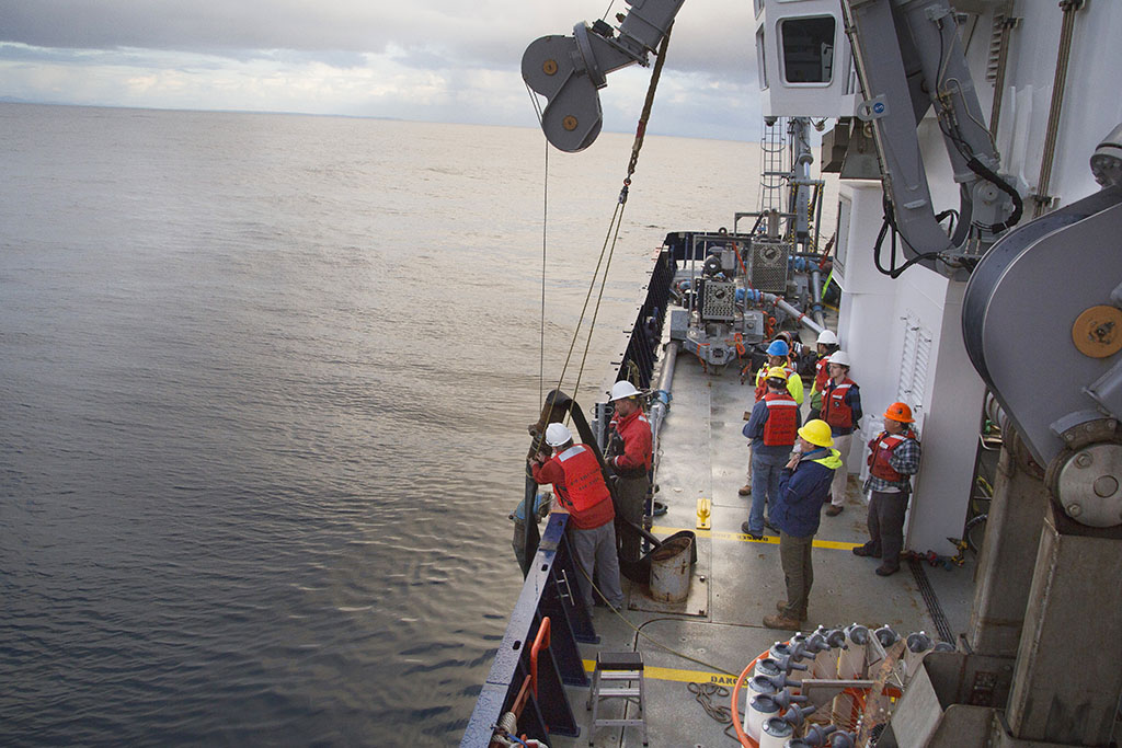 researchers working off the side of a ship
