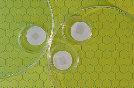Stamp-sized graphene sheets riddled with holes could be boon for molecular separation