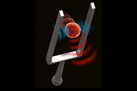 Acoustic waves can monitor stiffness of living cells