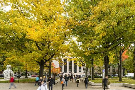 Climate and sustainability classes expand at MIT