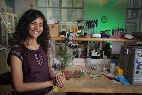 Krithika Ramchander awarded J-WAFS fellowship to develop accessible water filter for rural communities in India