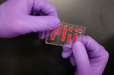 New method to keep hydrogels hydrated could lead to stretchy microfluidic devices and flexible bioelectronics.