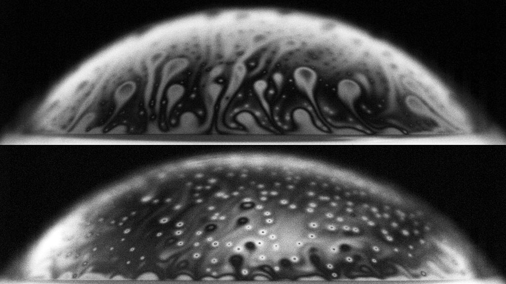 A water bubble containing bacteria