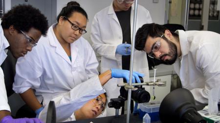 Discovering the Micro/Nano World